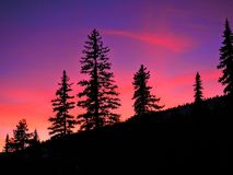 Розовый и фиолетовый заход солнца за деревьями горы Стоковые Фотографии RF