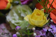 Розовый конец букета вверх и желтые розы закрывают вверх стоковые фотографии rf