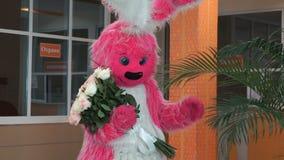 Розовый костюм кролика плюша при розы штрихуя листья ладони сток-видео