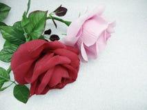 розовый красный цвет поднял Стоковая Фотография RF