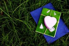 Розовый металл сердца Стоковые Изображения RF