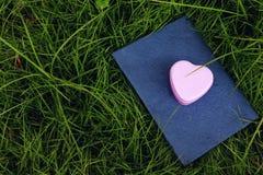 Розовый металл сердца Стоковое Изображение RF