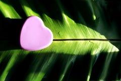 Розовый металл сердца Стоковая Фотография