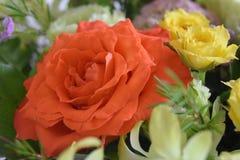 Розовый оранжевый конец букета вверх и желтые розы стоковая фотография rf