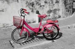Розовый остров Мальдивы атолла Raa Meedhoo велосипеда стоковое фото rf