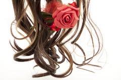 розовый парик Стоковые Изображения