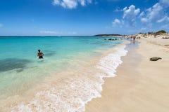 Розовый пляж песка Elafonissi стоковые фотографии rf