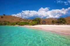 Розовый пляж Стоковое Изображение RF