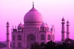 Розовый Тадж-Махал, Агра, Индия Стоковое фото RF