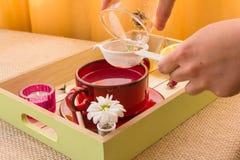Розовый тонический комплект подготовки чая Стоковые Изображения RF