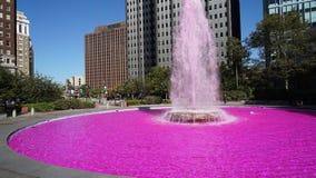 Розовый фонтан Стоковые Изображения
