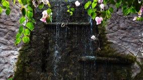 Розовый цветок и водопад