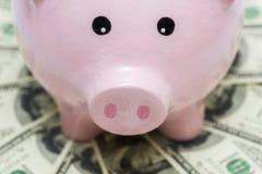 Розовый piggy банк на долларах Стоковые Фото