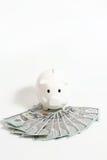 Розовый piggy банк на долларах Стоковая Фотография