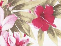 Розовым предпосылка гибискуса текстурированная цветком Стоковая Фотография RF