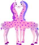 2 розовых жирафа Стоковое Изображение