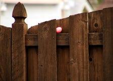 Розов-покрашенное пасхальное яйцо с именем ` Натали ` спрятано на уступе на деревянной загородке стоковые фото
