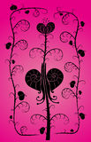 Розов-улитки Стоковое фото RF