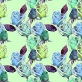 Розы акварели на картине Стоковое Изображение RF
