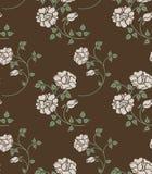 розы безшовные Стоковые Изображения