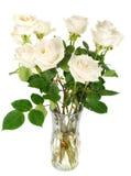 розы белые Стоковые Фотографии RF