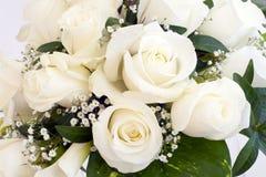 розы белые Стоковые Изображения RF
