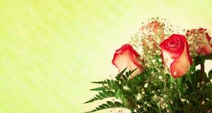 розы букета граници Стоковая Фотография