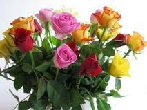 розы букета предпосылки белые Стоковые Изображения