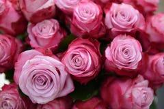 розы букета розовые Стоковая Фотография RF