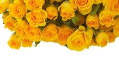 розы букета свежие Стоковое Фото
