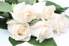 розы букета cream Стоковая Фотография