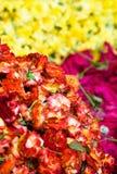 розы вороха Стоковые Фотографии RF