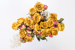 розы высушенные букетом Стоковые Изображения