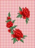Розы вышивки на checkered предпосылке Стоковое Изображение RF