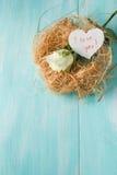 Розы в гнезде птицы Стоковое Изображение RF