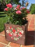 Розы в деревянном цветочном горшке Стоковая Фотография RF