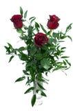 розы изолированные букетом Стоковые Фотографии RF