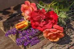 Розы и лаванда стоковое фото rf