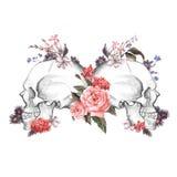 Розы и череп, день умерших, вектор Стоковое Изображение RF