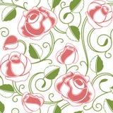 розы картины безшовные Стоковые Фотографии RF