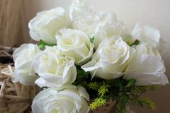 розы корзины белые Стоковое Изображение RF