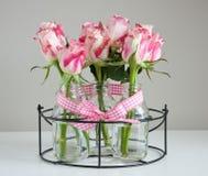розы краев розовые белые Стоковое Фото