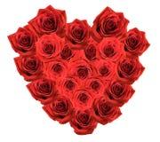 розы красного цвета букета Стоковые Фотографии RF