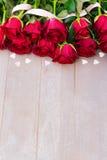 Розы красного цвета зацветая на древесине Стоковое Фото