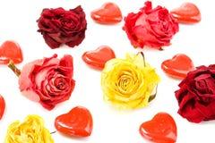 розы красного цвета сердец Стоковые Изображения RF