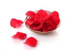 розы лепестков Стоковое Фото