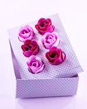Розы мыла Стоковые Фотографии RF