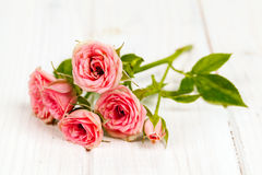 Розы на белой деревянной предпосылке планок Цветы Стоковое Фото