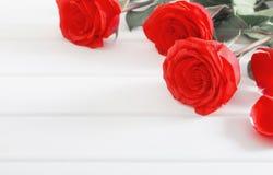 Розы на белой деревянной предпосылке планок Стоковое Изображение