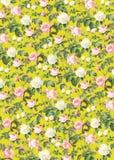 Розы на желтой предпосылке Стоковое фото RF